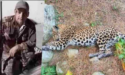 man-eating leopard became the target of the famous hunter Joy Hukil bullet in pithoragarh