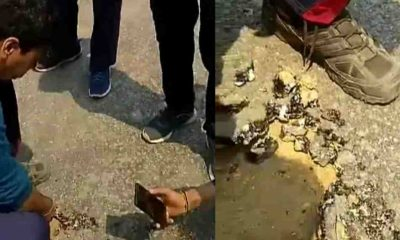 Uttarakhand news: Video of asphaltization during road construction in champawat had viral in social media.