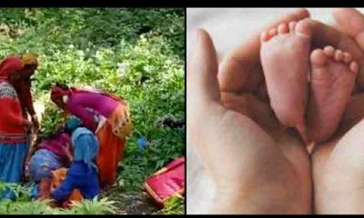 Uttarakhand news: bad seveices of medical in hills area, maternity gave birth to a child in the forest in chamoli.